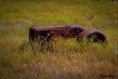 old-tractor-by-susan-guy-28a87e87f5c6fb90f1414bf9df8139cd12efbdc0