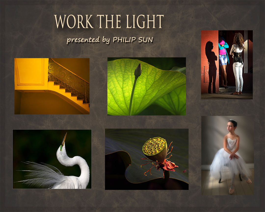 Work the Light presented by Philip Sun